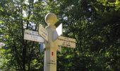 Randonnée Marche PIERREFONDS - en forêt de Compiègne_20_le Beaudon_bois de Damart_la Héronnière_bois du Bourgot - Photo 119