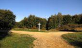 Randonnée Marche PIERREFONDS - en forêt de Compiègne_20_le Beaudon_bois de Damart_la Héronnière_bois du Bourgot - Photo 68