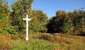Randonnée Marche PIERREFONDS - en forêt de Compiègne_20_le Beaudon_bois de Damart_la Héronnière_bois du Bourgot - Photo 53