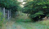 Randonnée Marche PIERREFONDS - en forêt de Compiègne_20_le Beaudon_bois de Damart_la Héronnière_bois du Bourgot - Photo 22