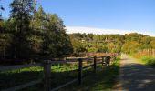 Randonnée Marche PIERREFONDS - en forêt de Compiègne_20_le Beaudon_bois de Damart_la Héronnière_bois du Bourgot - Photo 148