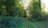 Randonnée Marche PIERREFONDS - en forêt de Compiègne_20_le Beaudon_bois de Damart_la Héronnière_bois du Bourgot - Photo 108