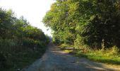 Randonnée Marche PIERREFONDS - en forêt de Compiègne_20_le Beaudon_bois de Damart_la Héronnière_bois du Bourgot - Photo 51