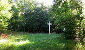Randonnée Marche PIERREFONDS - en forêt de Compiègne_20_le Beaudon_bois de Damart_la Héronnière_bois du Bourgot - Photo 82