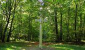 Randonnée Marche PIERREFONDS - en forêt de Compiègne_20_le Beaudon_bois de Damart_la Héronnière_bois du Bourgot - Photo 87