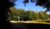 Randonnée Marche PIERREFONDS - en forêt de Compiègne_20_le Beaudon_bois de Damart_la Héronnière_bois du Bourgot - Photo 124