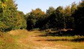 Randonnée Marche PIERREFONDS - en forêt de Compiègne_20_le Beaudon_bois de Damart_la Héronnière_bois du Bourgot - Photo 126