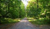 Randonnée Marche PIERREFONDS - en forêt de Compiègne_20_le Beaudon_bois de Damart_la Héronnière_bois du Bourgot - Photo 98