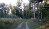 Randonnée Marche PIERREFONDS - en forêt de Compiègne_20_le Beaudon_bois de Damart_la Héronnière_bois du Bourgot - Photo 16