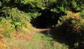 Randonnée Marche PIERREFONDS - en forêt de Compiègne_20_le Beaudon_bois de Damart_la Héronnière_bois du Bourgot - Photo 58