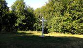 Randonnée Marche PIERREFONDS - en forêt de Compiègne_20_le Beaudon_bois de Damart_la Héronnière_bois du Bourgot - Photo 94