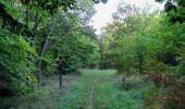 Randonnée Marche PIERREFONDS - en forêt de Compiègne_20_le Beaudon_bois de Damart_la Héronnière_bois du Bourgot - Photo 4