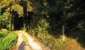 Randonnée Marche PIERREFONDS - en forêt de Compiègne_20_le Beaudon_bois de Damart_la Héronnière_bois du Bourgot - Photo 1