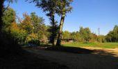Randonnée Marche PIERREFONDS - en forêt de Compiègne_20_le Beaudon_bois de Damart_la Héronnière_bois du Bourgot - Photo 109