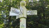 Randonnée Marche PIERREFONDS - en forêt de Compiègne_20_le Beaudon_bois de Damart_la Héronnière_bois du Bourgot - Photo 84