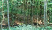 Randonnée Marche PIERREFONDS - en forêt de Compiègne_20_le Beaudon_bois de Damart_la Héronnière_bois du Bourgot - Photo 45