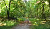 Randonnée Marche PIERREFONDS - en forêt de Compiègne_20_le Beaudon_bois de Damart_la Héronnière_bois du Bourgot - Photo 88