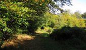 Randonnée Marche PIERREFONDS - en forêt de Compiègne_20_le Beaudon_bois de Damart_la Héronnière_bois du Bourgot - Photo 59