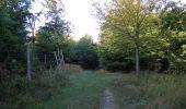 Randonnée Marche PIERREFONDS - en forêt de Compiègne_20_le Beaudon_bois de Damart_la Héronnière_bois du Bourgot - Photo 21