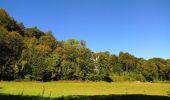 Randonnée Marche PIERREFONDS - en forêt de Compiègne_20_le Beaudon_bois de Damart_la Héronnière_bois du Bourgot - Photo 137