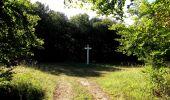 Randonnée Marche PIERREFONDS - en forêt de Compiègne_20_le Beaudon_bois de Damart_la Héronnière_bois du Bourgot - Photo 92