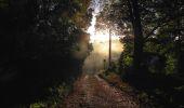 Randonnée Marche PIERREFONDS - en forêt de Compiègne_20_le Beaudon_bois de Damart_la Héronnière_bois du Bourgot - Photo 2