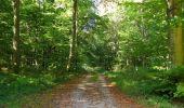 Randonnée Marche PIERREFONDS - en forêt de Compiègne_20_le Beaudon_bois de Damart_la Héronnière_bois du Bourgot - Photo 116