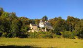 Randonnée Marche PIERREFONDS - en forêt de Compiègne_20_le Beaudon_bois de Damart_la Héronnière_bois du Bourgot - Photo 140