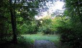 Randonnée Marche PIERREFONDS - en forêt de Compiègne_20_le Beaudon_bois de Damart_la Héronnière_bois du Bourgot - Photo 3