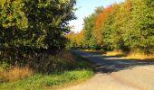 Randonnée Marche PIERREFONDS - en forêt de Compiègne_20_le Beaudon_bois de Damart_la Héronnière_bois du Bourgot - Photo 52