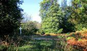 Randonnée Marche PIERREFONDS - en forêt de Compiègne_20_le Beaudon_bois de Damart_la Héronnière_bois du Bourgot - Photo 46