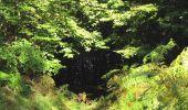 Randonnée Marche PIERREFONDS - en forêt de Compiègne_20_le Beaudon_bois de Damart_la Héronnière_bois du Bourgot - Photo 56