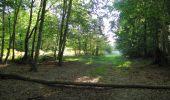 Randonnée Marche PIERREFONDS - en forêt de Compiègne_20_le Beaudon_bois de Damart_la Héronnière_bois du Bourgot - Photo 62
