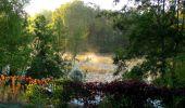 Randonnée Marche PIERREFONDS - en forêt de Compiègne_20_le Beaudon_bois de Damart_la Héronnière_bois du Bourgot - Photo 144