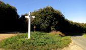 Randonnée Marche PIERREFONDS - en forêt de Compiègne_20_le Beaudon_bois de Damart_la Héronnière_bois du Bourgot - Photo 71