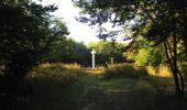 Randonnée Marche PIERREFONDS - en forêt de Compiègne_20_le Beaudon_bois de Damart_la Héronnière_bois du Bourgot - Photo 35