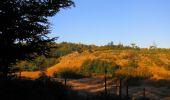 Randonnée Marche PIERREFONDS - en forêt de Compiègne_20_le Beaudon_bois de Damart_la Héronnière_bois du Bourgot - Photo 27