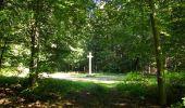 Randonnée Marche PIERREFONDS - en forêt de Compiègne_20_le Beaudon_bois de Damart_la Héronnière_bois du Bourgot - Photo 115
