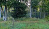 Randonnée Marche PIERREFONDS - en forêt de Compiègne_20_le Beaudon_bois de Damart_la Héronnière_bois du Bourgot - Photo 15