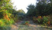 Randonnée Marche PIERREFONDS - en forêt de Compiègne_20_le Beaudon_bois de Damart_la Héronnière_bois du Bourgot - Photo 19