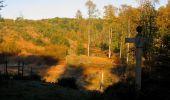 Randonnée Marche PIERREFONDS - en forêt de Compiègne_20_le Beaudon_bois de Damart_la Héronnière_bois du Bourgot - Photo 26