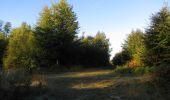 Randonnée Marche PIERREFONDS - en forêt de Compiègne_20_le Beaudon_bois de Damart_la Héronnière_bois du Bourgot - Photo 17