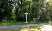 Randonnée Marche PIERREFONDS - en forêt de Compiègne_20_le Beaudon_bois de Damart_la Héronnière_bois du Bourgot - Photo 121