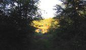 Randonnée Marche PIERREFONDS - en forêt de Compiègne_20_le Beaudon_bois de Damart_la Héronnière_bois du Bourgot - Photo 25