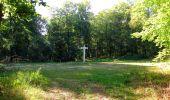 Randonnée Marche PIERREFONDS - en forêt de Compiègne_20_le Beaudon_bois de Damart_la Héronnière_bois du Bourgot - Photo 77
