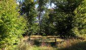 Randonnée Marche PIERREFONDS - en forêt de Compiègne_20_le Beaudon_bois de Damart_la Héronnière_bois du Bourgot - Photo 65