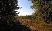 Randonnée Marche PIERREFONDS - en forêt de Compiègne_20_le Beaudon_bois de Damart_la Héronnière_bois du Bourgot - Photo 54