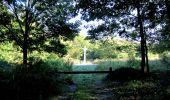 Randonnée Marche PIERREFONDS - en forêt de Compiègne_20_le Beaudon_bois de Damart_la Héronnière_bois du Bourgot - Photo 40