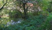 Randonnée Marche PIERREFONDS - en forêt de Compiègne_20_le Beaudon_bois de Damart_la Héronnière_bois du Bourgot - Photo 133