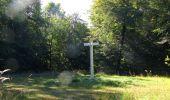 Randonnée Marche PIERREFONDS - en forêt de Compiègne_20_le Beaudon_bois de Damart_la Héronnière_bois du Bourgot - Photo 89